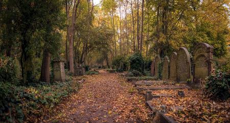 ロンドンのハイゲイト墓地で墓石の間のパスのパノラマ撮影