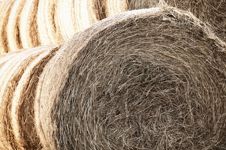 Beautiful hay bales with the sun shining in the background Stock Photo - 13697788