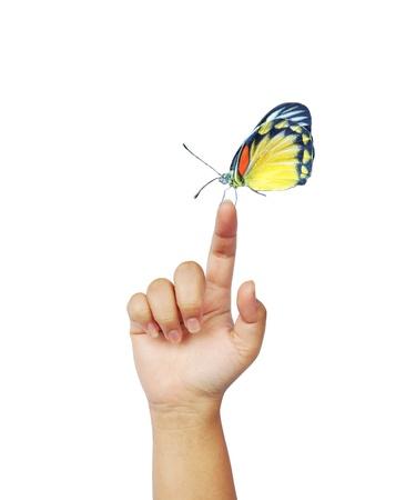 butterfly on woman