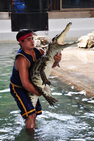 Crocodile wrestlers performing a show in January 2, 2012 in Nakom Pathom, Thailand.