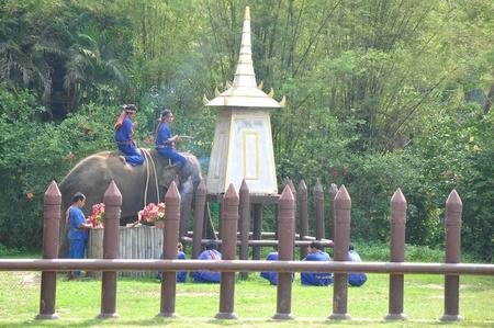 Elephant  show at Samphran Elephant Ground & Zoo, Thailand.