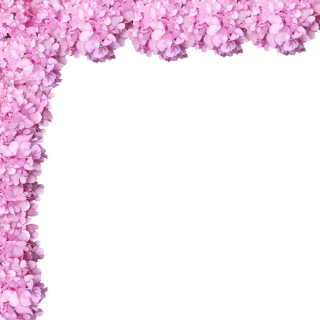 Pink falling flower frame to be used as border or background Stock Photo
