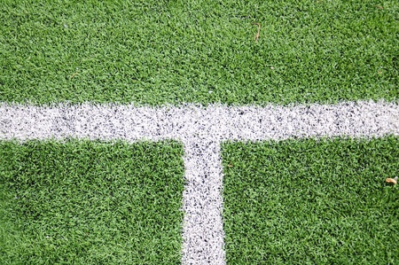 White lind on green grass soccer field Stock Photo