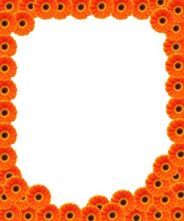 flower frame isolated on white background