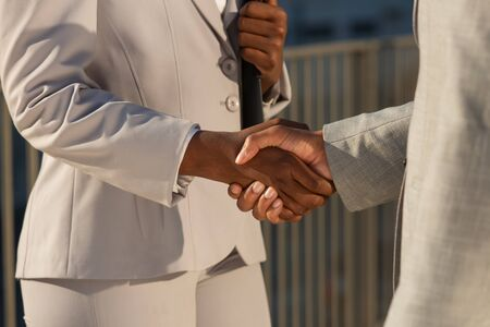 Businessman greeting African American female partner. Diverse business people shaking hands. Collaboration concept