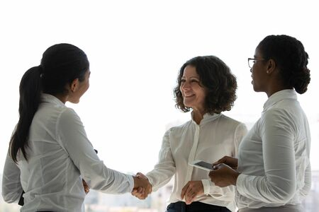 Happy female business partners celebrating successful contract. Business women standing near office window, smiling and shaking hands. Business networking concept Stock Photo