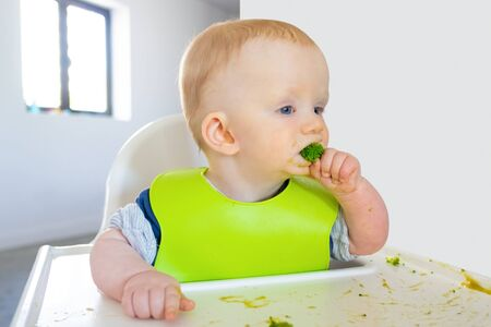 Pensive baby biting broccoli piece, making messy on tray. Little child wearing plastic bib, sitting in highchair. First solid food or child care at home concept Foto de archivo