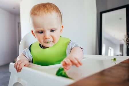 Serious baby girl sitting on highchair and grabbing finger food. Little child starting eating by herself Led weaning and self-feeding concept