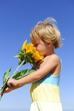 scent: Summer scent: Cute child smelling a sunflower Stock Photo
