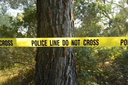 Crime scene in the forest: Yellow police line do not cross tape photo