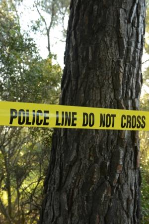 escena del crimen: La escena del crimen en el bosque: la l�nea amarilla de la polic�a no cruza la cinta Foto de archivo