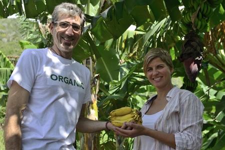 Organic farmer and customer in banana plantation photo