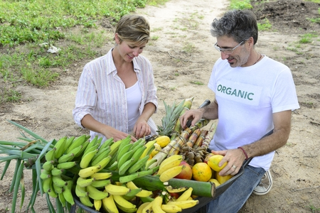 Organic farming: Customer buying fresh vegetables and fruits direct from local farmer photo
