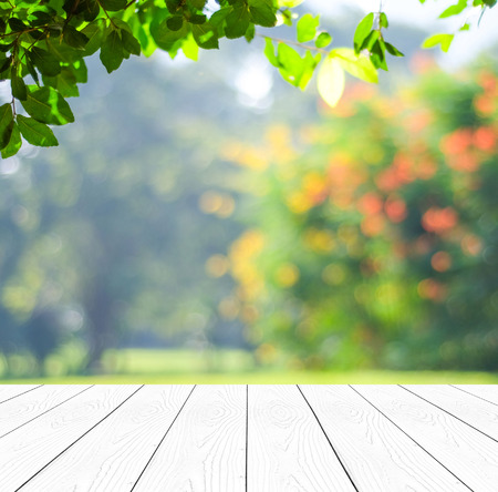 Perspective wood over blur trees with bokeh background, spring and summer season Фото со стока