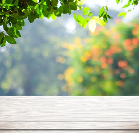 Leere weiße Tafel über verschwommenes Bäume mit Bokeh Hintergrund, Produkt-Anzeige Vorlage Standard-Bild - 37489205