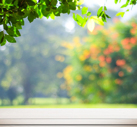 natur: Leere weiße Tafel über verschwommenes Bäume mit Bokeh Hintergrund, Produkt-Anzeige Vorlage