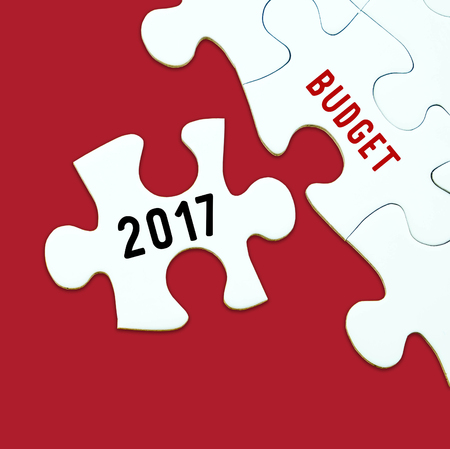 2017 budget word on jigsaw puzzle background, business concept