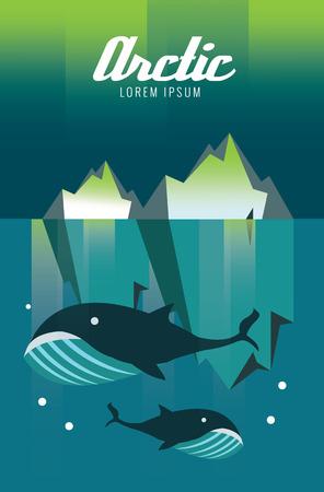 arctic zone: Whale and iceberg. Arctic Aurora nature. flat design elements. vector illustration