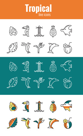 wave tourist: tropical icons, mono and line flat vector symbols
