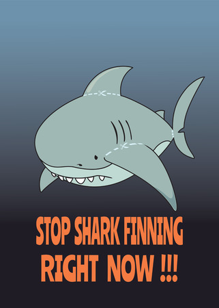 savagery: Stop shark finning. Cute,sad looking great white shark