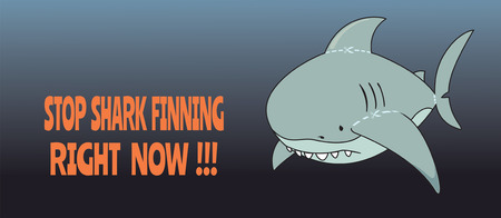 slaughter: Stop shark finning. cute, sad looking great white shark