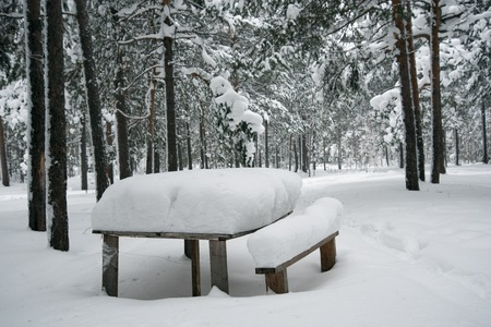 Table in winter forest