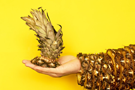 Pineapple top with leaves in hand and the rest of the skin is dressed in hand