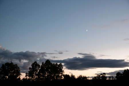 A crescent moon in the blue sky at dusk. Silhouettes of trees. Landscape.