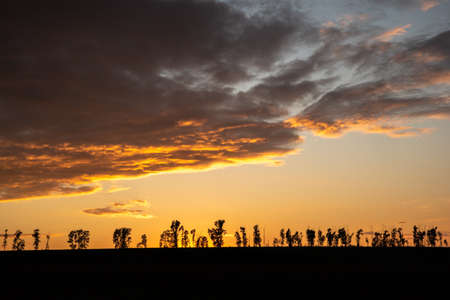 Summer colorful dramatic sunset with clouds and small trees. Silhouette Of Trees Backlit By A Beautiful Sunset