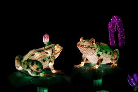 Chinese lantern installation with two frogs sitting next to each other illuminated at night
