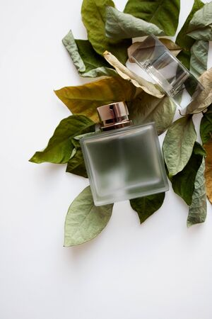 Rectangular glass perfume bottle on dried green and yellow leaves