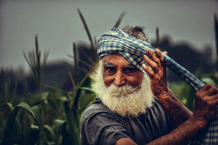 indian farmer who works morning to mid night.