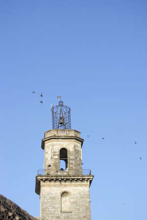middleages: The village bell tower surrounded by swallows that migrate here every year at this time.