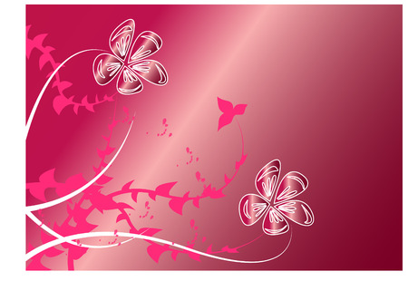 Beautiful flowers on pink background Vector