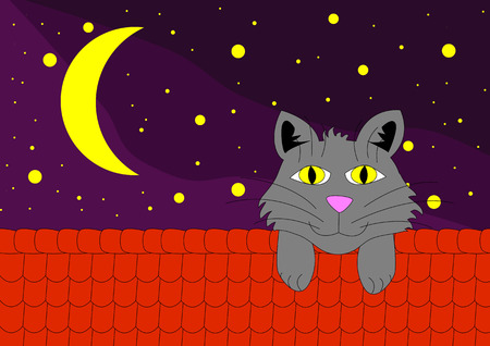 cat on roof in night under stars Vector