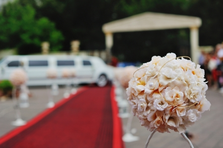 wedding reception with a red carpet and limo