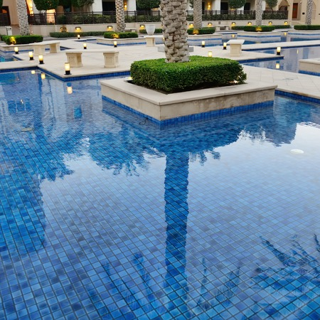 swimming  water pool, reflection of palm tree