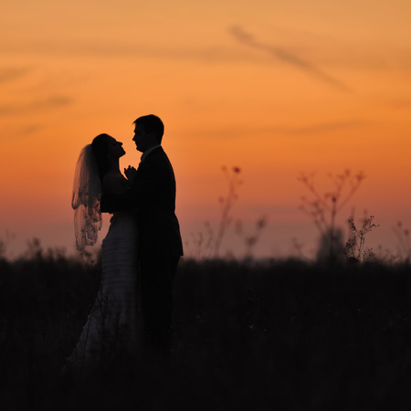 emotional couple: Silhouette of  wedding couple in field. Bride and groom together.