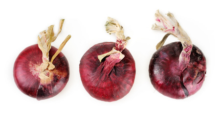 claret: claret onions izolated on white Stock Photo