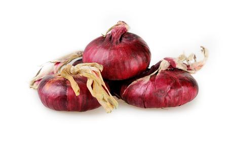 claret: claret onions izolated on white Stock Photo
