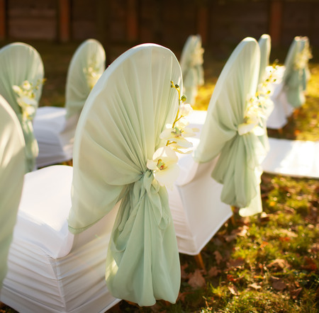 美しい秋の庭で結婚式 写真素材
