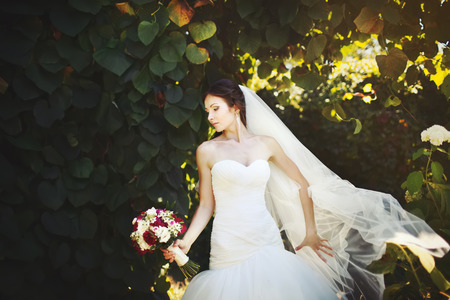 marriageable: Adorable young caucasian bride in garden, sunny summer day.