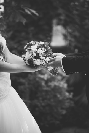 wedding day: Hands of newlywed couple in love, wedding on summer day.  Picture in black and white.