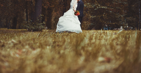 aniversario de boda: Cuadro del verano de la feliz pareja de novios exterior. Foto de archivo
