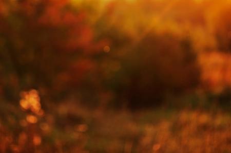 de focused: Blurred background. De focused Light