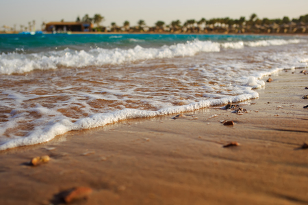 Brown sand beach in the morning light