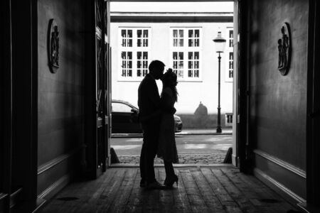 Silhouettes of a bridal couple kissing, happy bride and groom together. Reklamní fotografie - 133168639