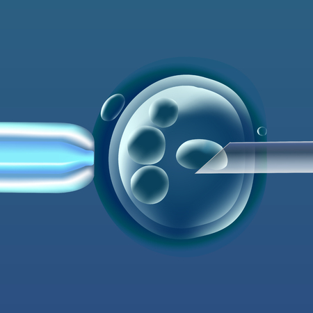In vitro fertilization, the egg ovum , pipette and pipe horizontal, reproduction in humans illustration for an article, site or typography magazine, brochure, flyer, poster, blue color. Illustration