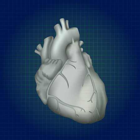 Human heart. Anatomy illustration. Gray image, dark blue science background Illustration
