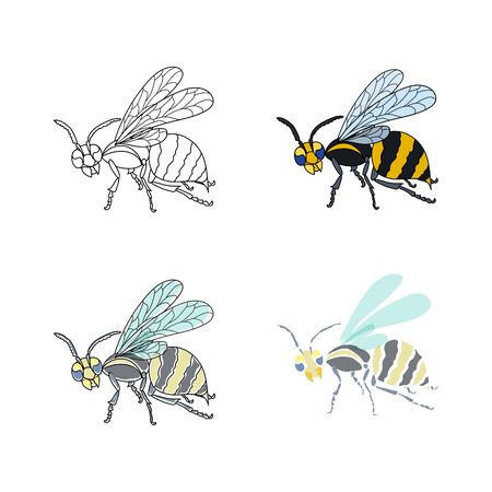 Set of wasps. Lineart, colored, painted. Vector nature illustration.